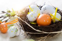 Easter eggs decoration, eggs in the nest Royalty Free Stock Photos