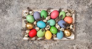 Easter eggs decoration holidays banner Stock Image