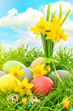 Easter eggs decoration and narcissus flowers. Blue sky with lens Stock Photography