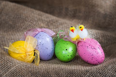 Easter eggs and decorative chickens Stock Image