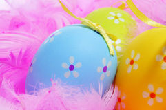 Easter eggs and feathers Royalty Free Stock Photos