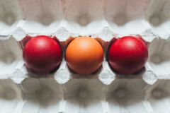 Easter eggs of different colors in tray stock photos