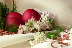 Easter eggs with different flowers. Grouped easter egg surrounded by flowers in a basket Stock Photos