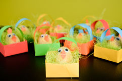 Easter eggs disguised as chickens are sitting on a table or a de Royalty Free Stock Photo