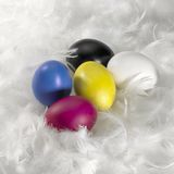 Easter eggs and down feathers. Studio photography of some colored Easter eggs located in a white down feather background stock photo