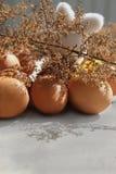 Easter eggs among dry vegetation Stock Photos