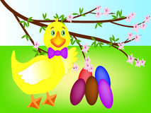 Easter eggs duckling. Royalty Free Stock Image