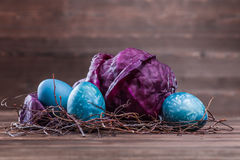 Easter eggs dyed with cabbage. Natural easter egg dyeing turquoise with red cabbage Royalty Free Stock Photo