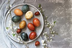 Easter eggs dyed with natural dyes, cabbage, chamomile, hibiscus and onion peel. stock photos