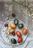 Easter eggs dyed with natural dyes, cabbage, chamomile, hibiscus and onion peel. royalty free stock images