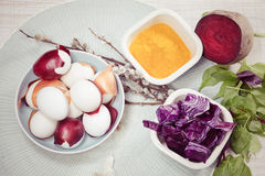 Easter eggs dyeing Stock Images