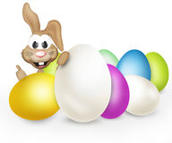 Easter eggs easter bunny Royalty Free Stock Images