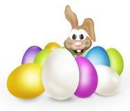 Easter eggs easter bunny Stock Photos