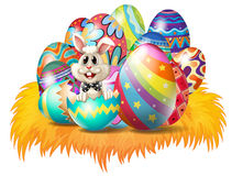 Easter eggs with an Easter bunny Royalty Free Stock Photo