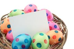 Easter eggs with easter card. Blank card in a nest with colorful easter eggs Stock Photos