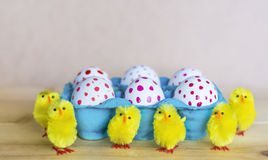 Easter eggs and easter chickens Stock Photos