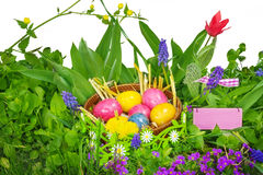 Easter eggs, Easter decoration Royalty Free Stock Photo