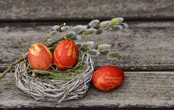 Easter Eggs, Easter Nest Stock Images