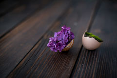 Easter eggs. Egg-shell with lilac and moss Royalty Free Stock Photos