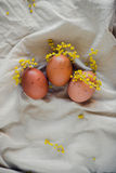 Easter eggs with faces and wreathes from mimosa lying on linen fabric. Shot of three brown egs with painted faces and flowers wrethes Stock Image