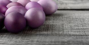 Easter eggs in fashionable colors on a gray wooden background.  Stock Photos