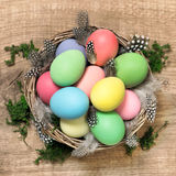 Easter eggs with feather decoration in basket Stock Photos