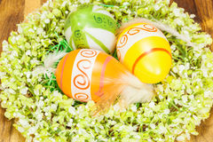 Easter Eggs in feather nest with Wreath Around Stock Photo