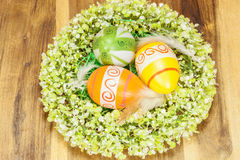 Easter Eggs in feather nest with Wreath Around Royalty Free Stock Images
