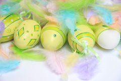 Easter eggs with feathers Stock Image