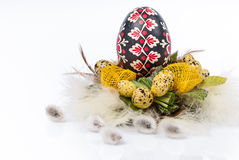 Easter eggs with feathers and pussy willow. And green leafs on white background Royalty Free Stock Images