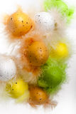 Easter eggs with feathers on white vertical. Easter eggs with feathers on white background isolated Stock Image