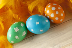Easter eggs and feathers on wooden boards Royalty Free Stock Photography