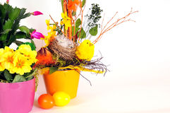 Easter eggs flower arrangements Royalty Free Stock Photos