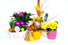 Easter eggs flower arrangements Stock Image