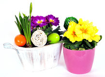 Easter eggs flower arrangements Royalty Free Stock Images