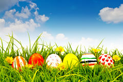 Easter Eggs with flower on Fresh Green Grass. royalty free stock image
