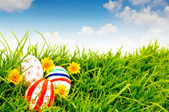 Easter Eggs with flower on Fresh Green Grass. Royalty Free Stock Images