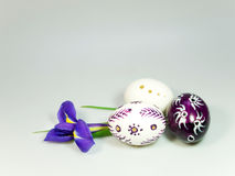 Easter eggs and flower of iris Stock Photos