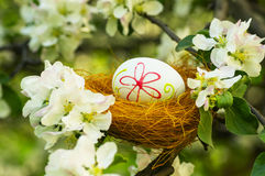 Easter eggs in the flowering garden Royalty Free Stock Images