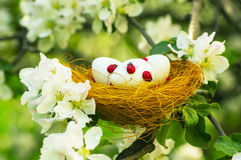 Easter eggs in the flowering garden Royalty Free Stock Photo