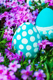 Easter eggs on flowering meadow. Stock Photo