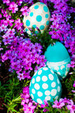 Easter eggs on flowering meadow. Royalty Free Stock Image