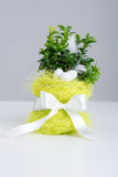 Easter eggs, flowerpot and ribbon Royalty Free Stock Photos