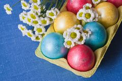 Easter eggs with flowers. Royalty Free Stock Image