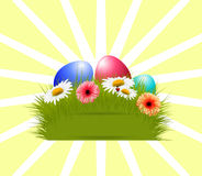 Easter eggs and flowers. Royalty Free Stock Photos