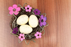 Easter eggs flowers Stock Image