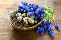 Easter eggs with flowers in a basket Royalty Free Stock Photography