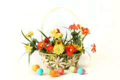 Easter eggs with flowers and basket. White background Stock Image