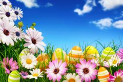 Easter eggs, flowers and the blue sky Stock Photos