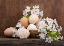 Easter eggs and  flowers Royalty Free Stock Image